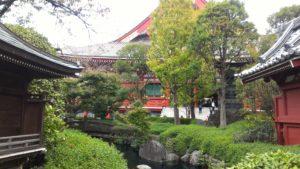 ASAKUSA - Tra templi e giardini (foto aggynomadi)